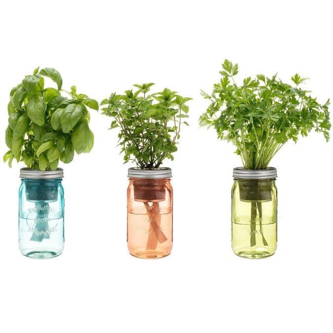 Garden-Jar.jpg